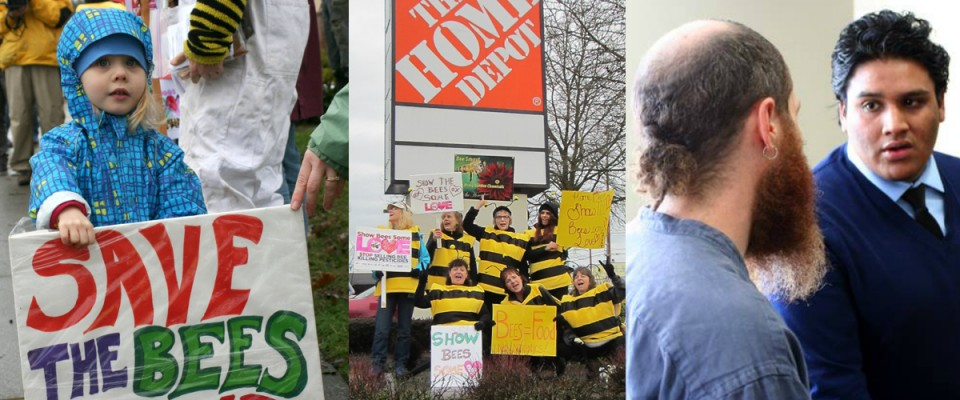 A collage of images of Beyond Toxics events and direct actions