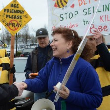 Lisa Arkin shakes someone's hand at a rally to stop the sale of pesticides that are killing bees.